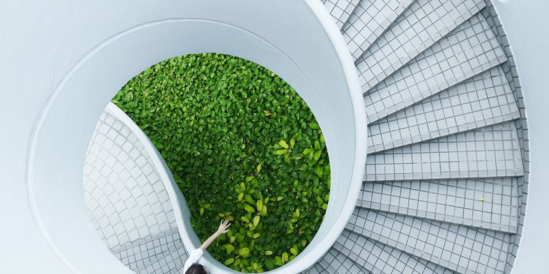 Cikkajánló hétvégére: a nukleáris ipar trendjein át a zöldgazdaságig