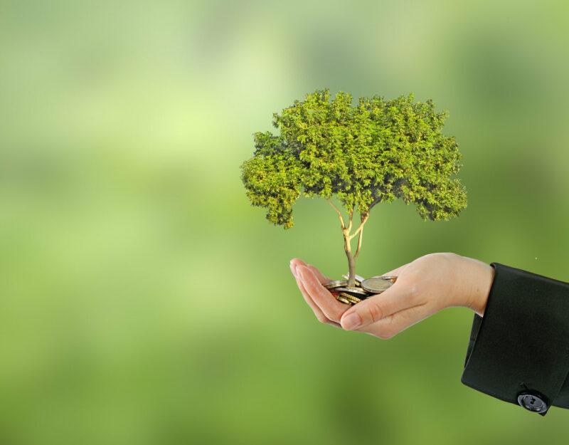 """Taxonómia – avagy mi minősül valóban """"zöldnek""""?"""