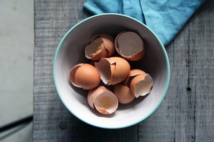 Ezért tedd a tojáshéjat is a pizzatésztádba!