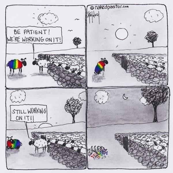 Sem homo, sem hetero